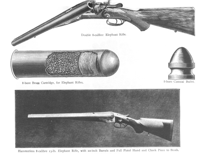 8-bore-rifle.jpg