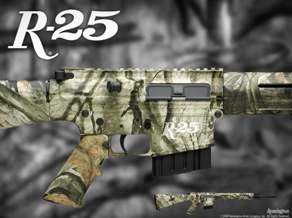 remington model r 25: new ar 10 in .243, 7mm 08 and .308