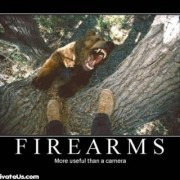 firearms-bear-camera-demotivational-posters-tm.jpg