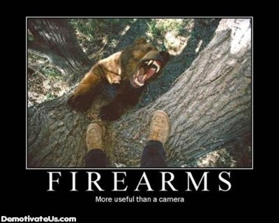 Firearms-Bear-Camera-Demotivational-Posters