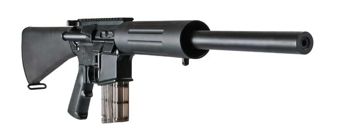 Dpms 22 Lr Rifles From The 2013 Shot Show The Firearm