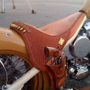 bike_holster-tm-tfb