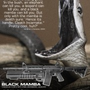 blackmamba_sheet-tm-tfb1