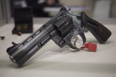 Same as above, but with cutaway. You can see detail on the rest of the gun.