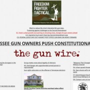 the_gun_wire-tm-tfb