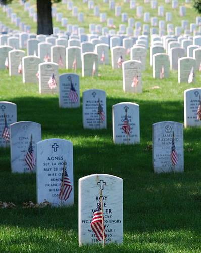 tmp_dropzone_477px_graves_at_arlington_on_memorial_day-tm-tfb