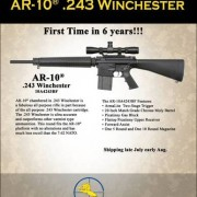 tmp_dropzone_armalite_ar_10_in_243_winchester_limited_runb-tm-tfb