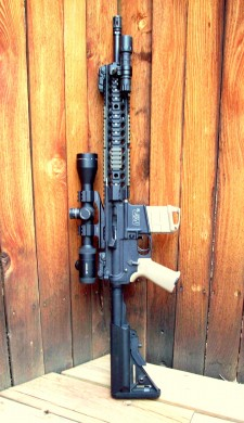 M&P 15 without forward assist or dust cover.