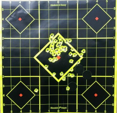50 total rounds. I believe a few went through and through in the last 20 shots.