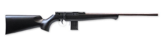 ISSC target rifle
