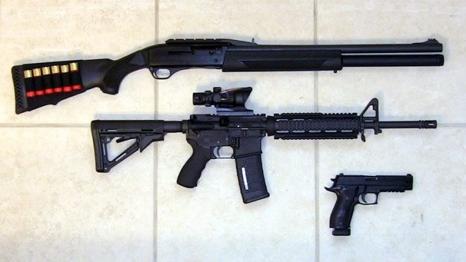 These aren't mine, but I think the AR platform and Sig are a great way to go.