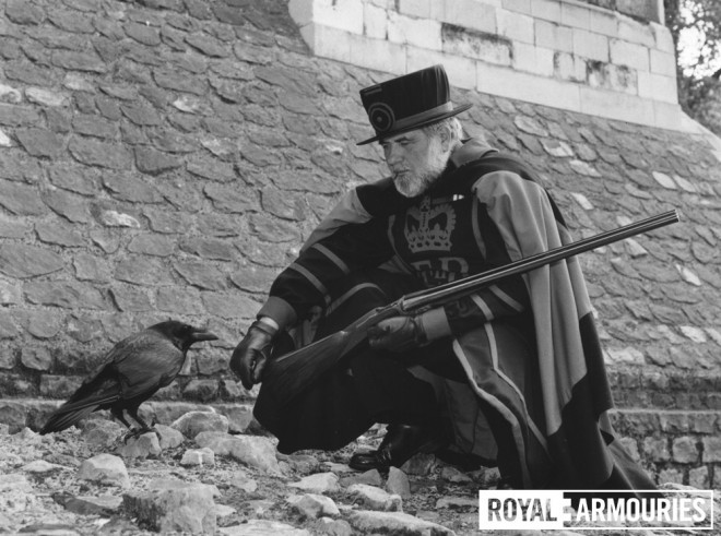 The Tower Ravenmaster shows the new gun to one of the Tower's ravens, 1984 © Royal Armouries