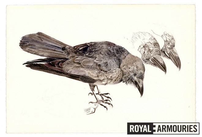 More detailed drawing by Appleby used as reference for the feather engraving on the gun, 1984