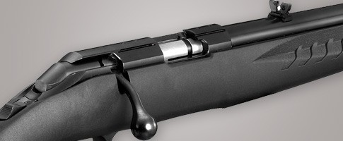 Ruger American Rimfire:  22 LR and  22 Magnum 10/22 Style A
