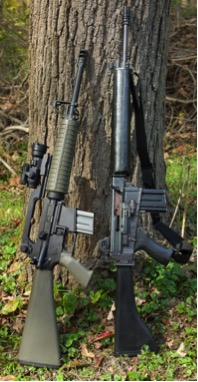 Side by side comparison of original and new Armalite weapons. Note the AR-180's 20 inch barrel.