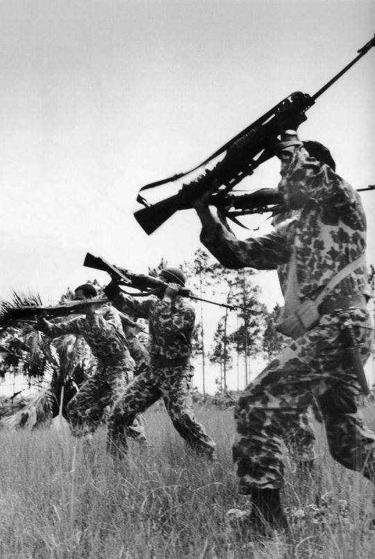 The Guns Of The Bay Of Pigs Invasion The Firearm Blogthe