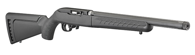 Ruger 1022 Takedown