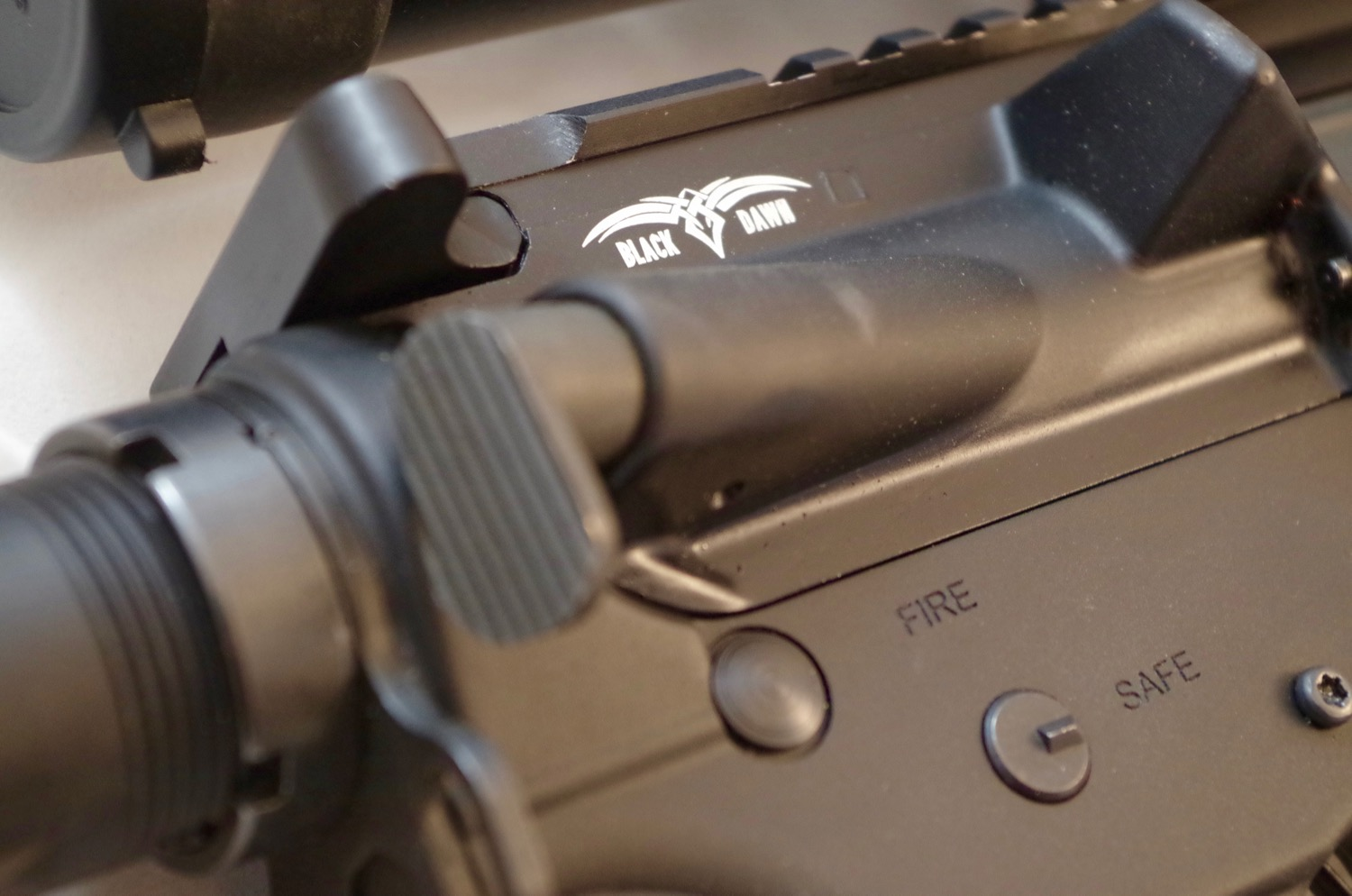 Not that the forward assist is all that useful these days; this rifle had a nice large button if you do use it.