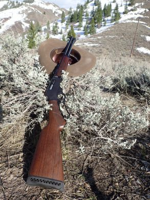 Review: Henry  45-70 H010