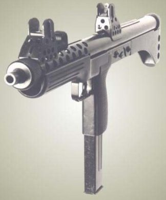 "The ""Skeleton's"" straight-line configuration dictated that raised sights be used."