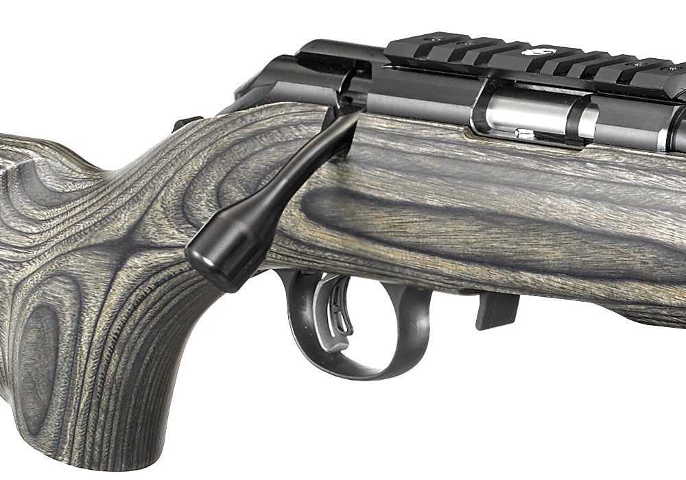 The New Ruger American Rimfire Target The Firearm