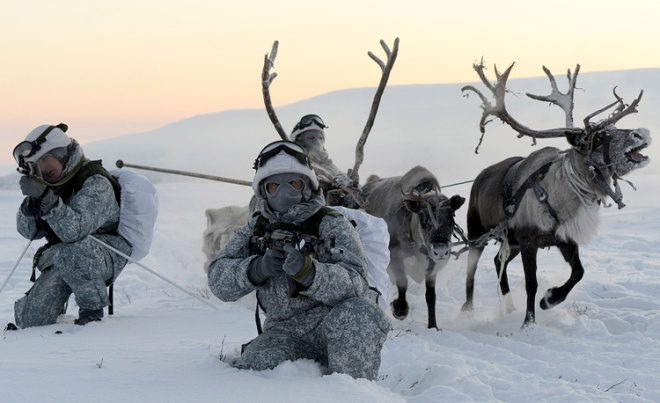 Russian Arctic Forces Learn To Drive Reindeer Sleighs
