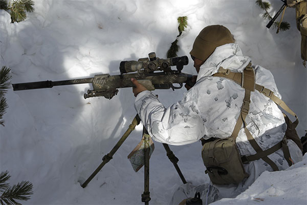 dynamics of a scout sniper platoon part two