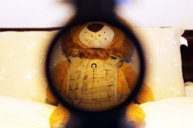 The ACSS reticle at 1x