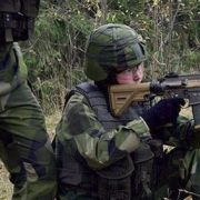 Swedish Armed Forces: Sub-Machine gun MP7 and Automatkarbin 416/417