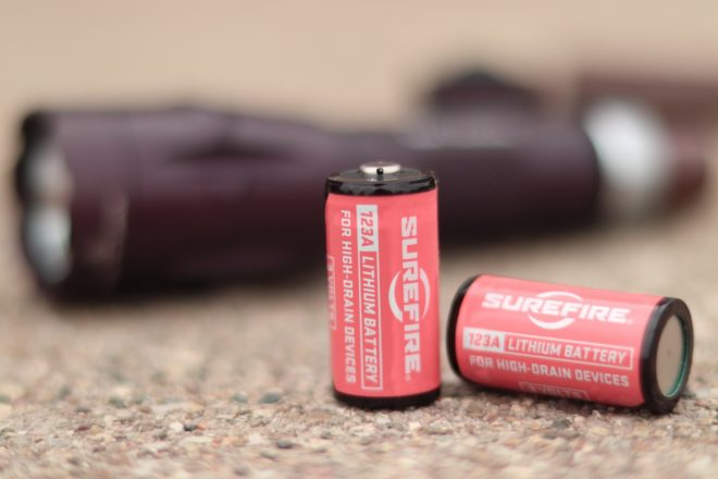 Dual Fuel Battery