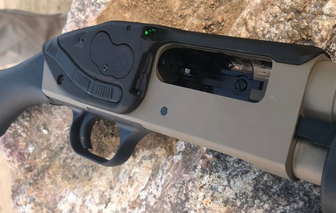 Crimson Trace Lasersaddle LS-250: First Impressions -The Firearm Blog