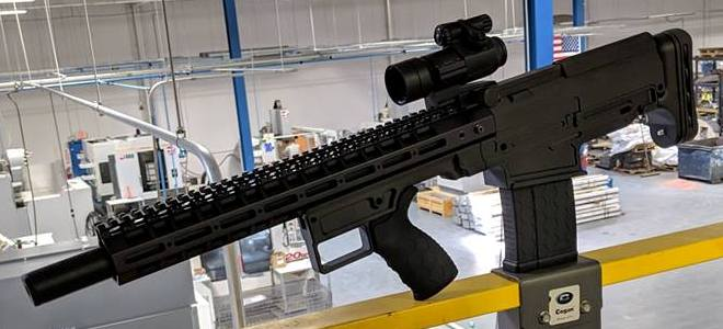FIMS Firerms Staright Pull .308 Bullpup Rifle (4)
