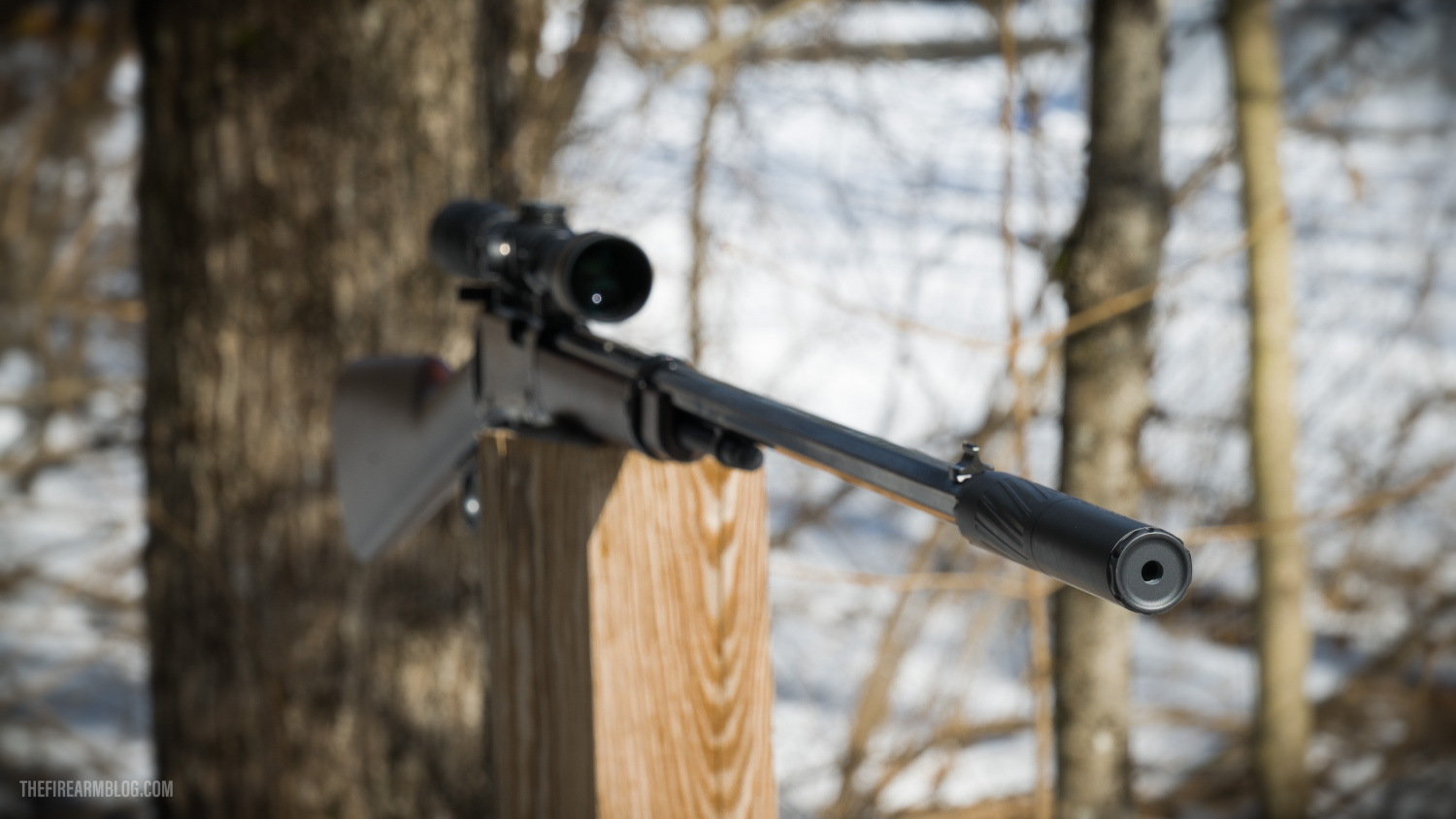 SILENCER SATURDAY #113: A Glorious Rimfire Silencer Setup - Perfectly Quiet