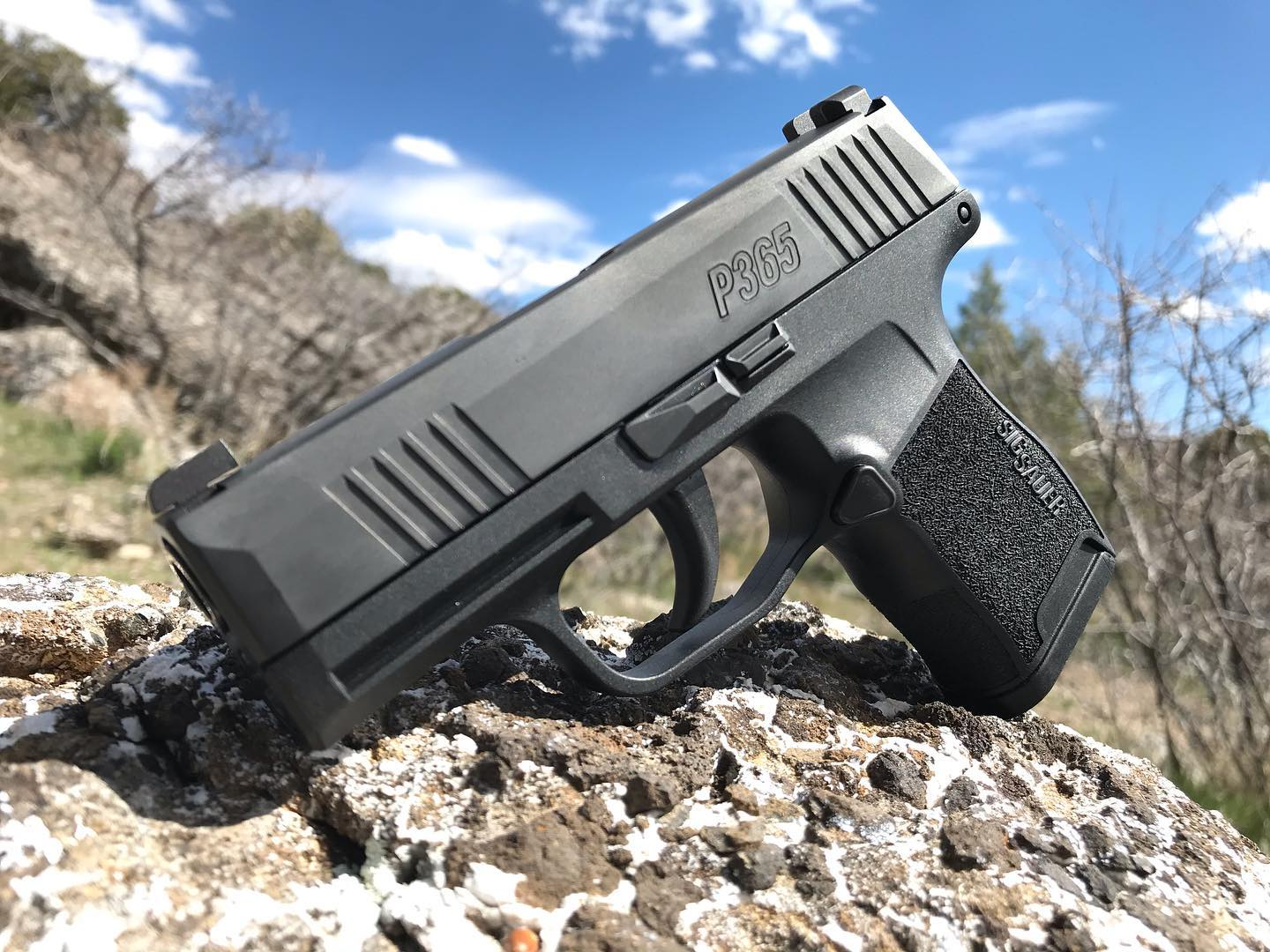 The P365 has been a big hit with many handgunners.