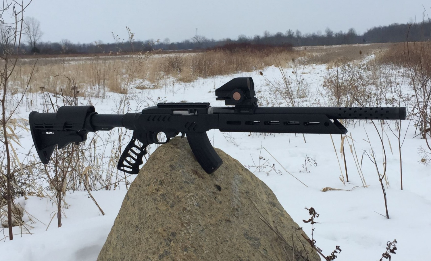 Crazy Ivan Ruger 1022 Takedown Chassis (3)